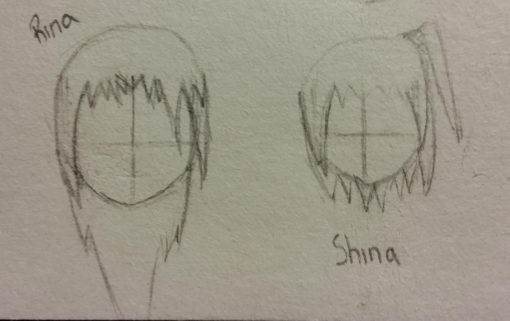 Rina and Shina Hairstyles by KurouixKagami