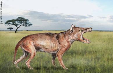 Creating the hyaenodon -3 by batworker