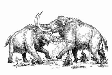 Mammoth fight by batworker