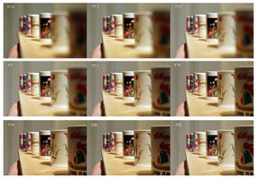 Depth Of Field Exercise by 35mil