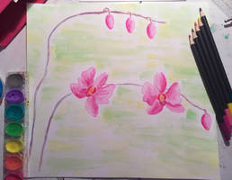 Pink Water Color Orchids by DoodleArt10