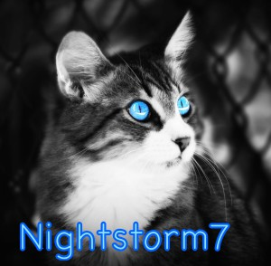 Nightstorm7's Profile Picture