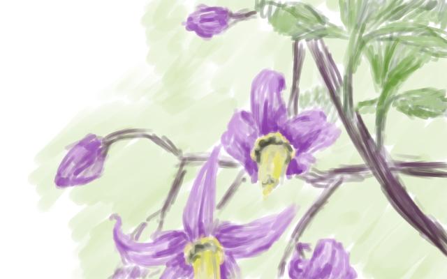 Flowers by Lebiro