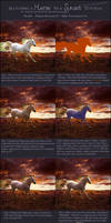 Matching a Horse to a Sunset Photomanip Tutorial
