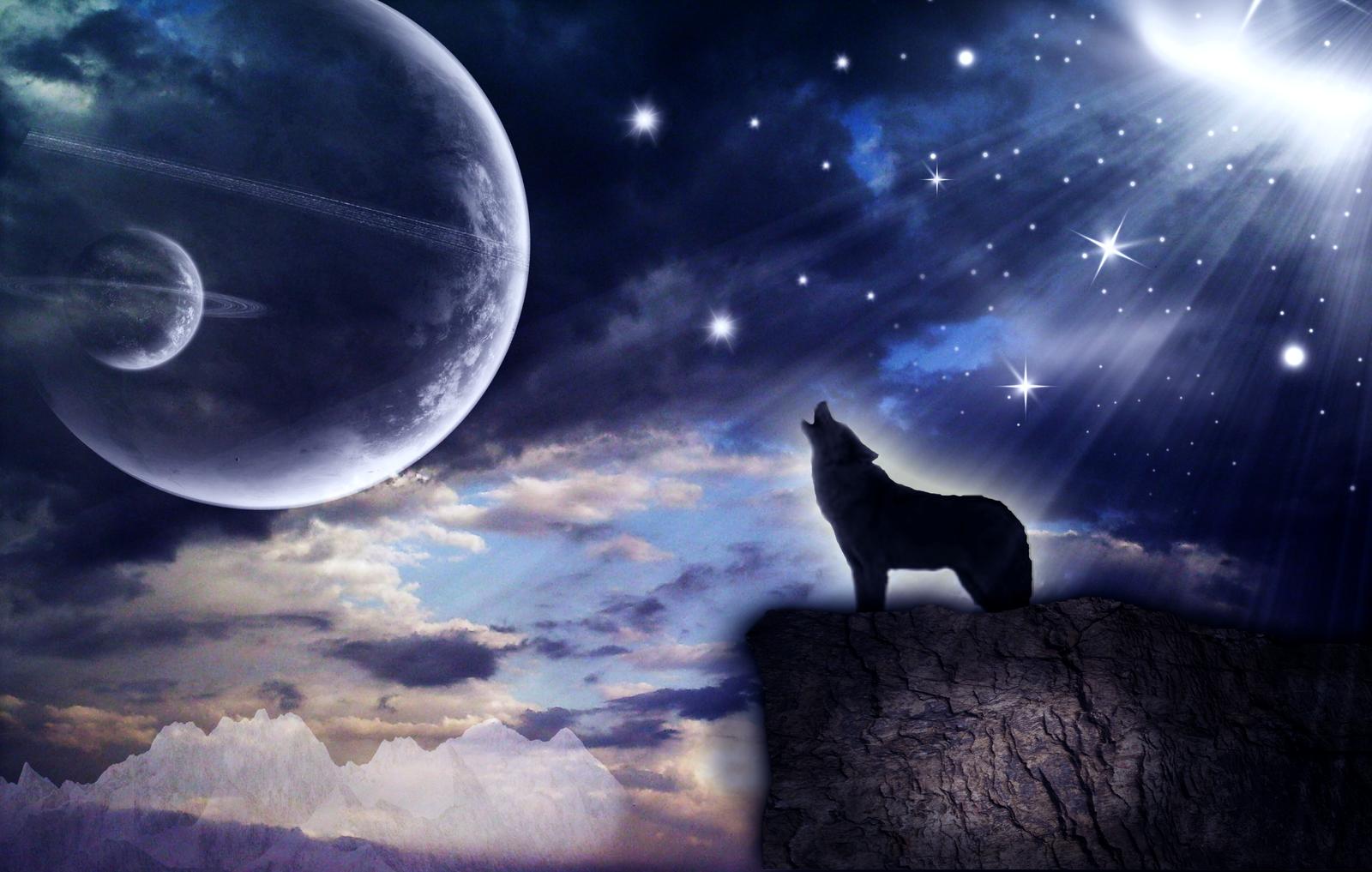 howling wolf by mindraiser on deviantart