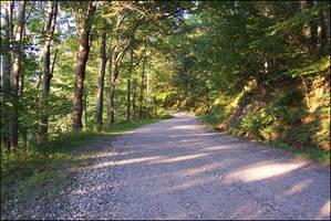 a_dirt_road_003 by spacingham
