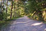 a_dirt_road_003
