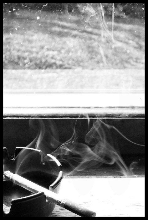 smokin_004 by spacingham
