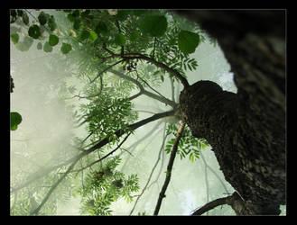Dim greenery 02 by Juodutia