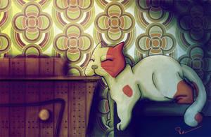 cat sleep by Tcim-mouton