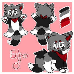 Echo Reference Sheet 2018
