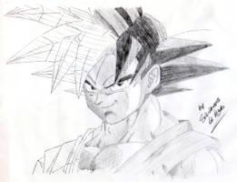 SonGokuu sketch by SLB81