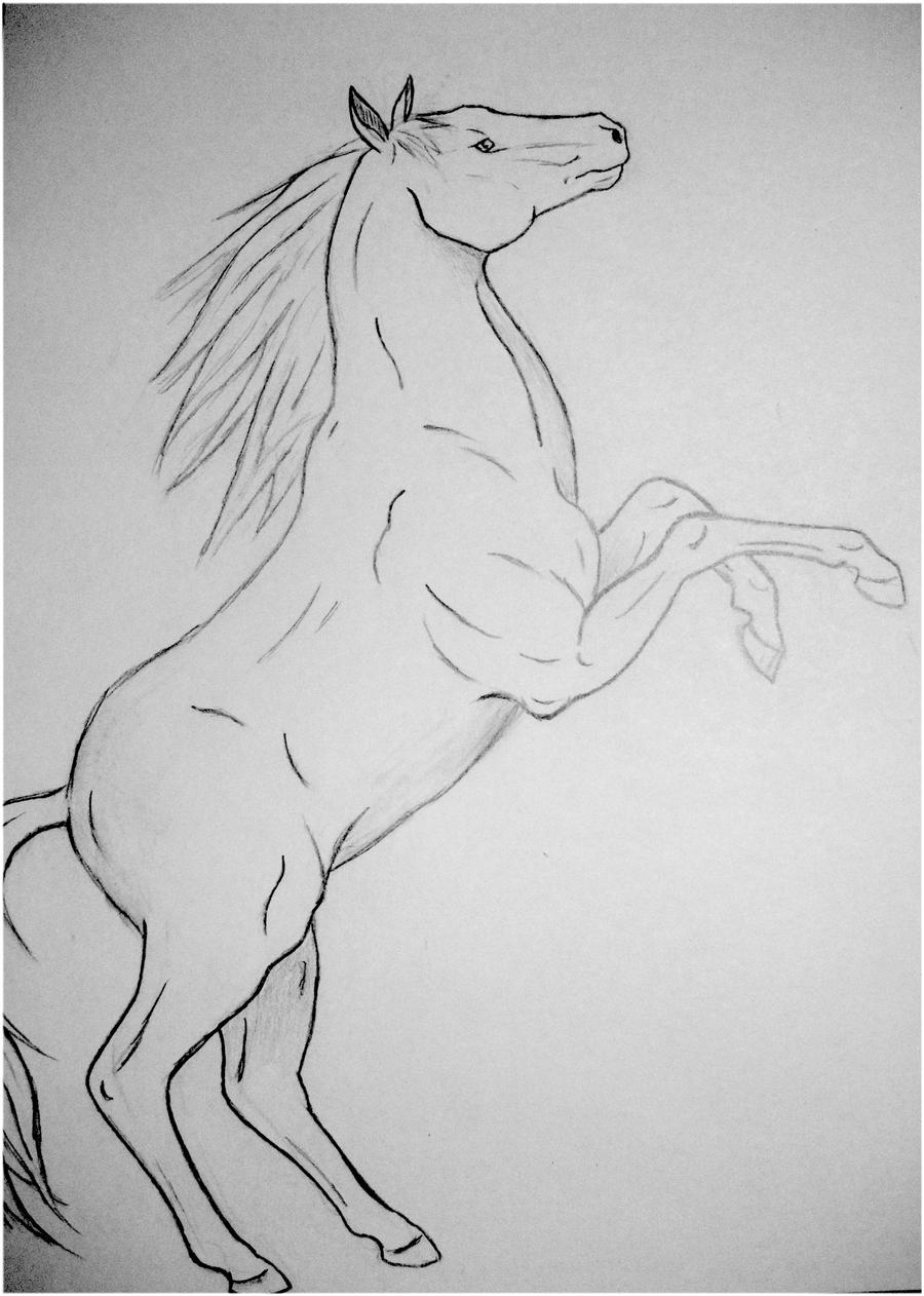 Rearing Horse by x----eLLiE----x