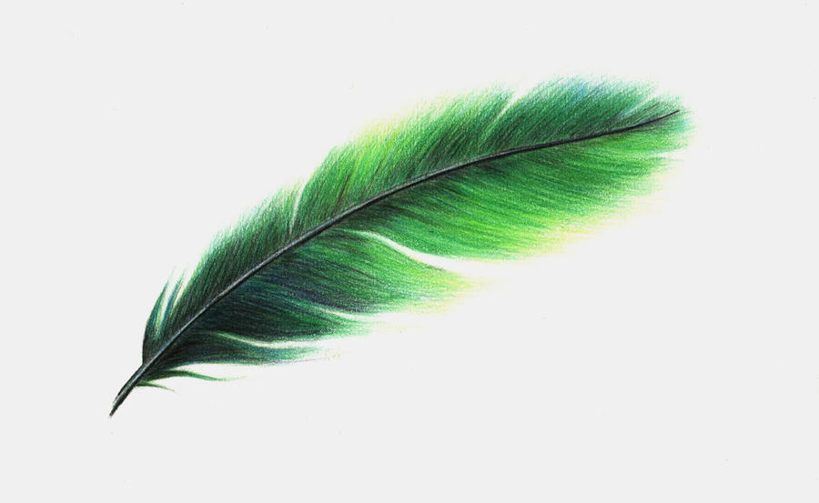 Feather design - commission by x----eLLiE----x