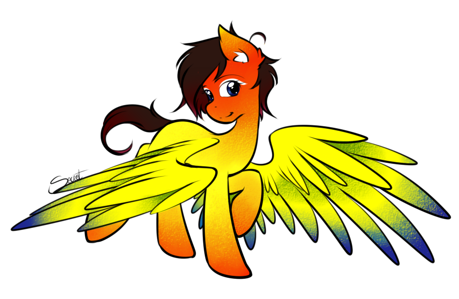 14 Sun Conure by secret-pony