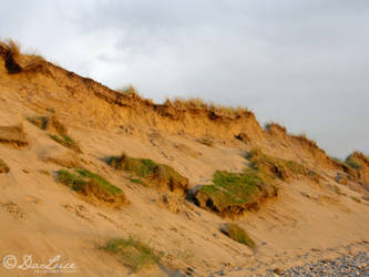Red Dune by DaLuce