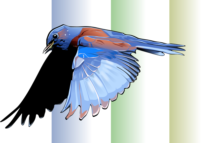 Friday Morning Inkscape Practice - Bird in Flight by Seothen