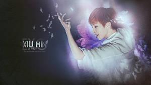 Xiumin - Exo by pihacem