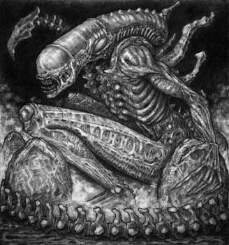 Xenomorph I