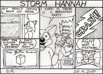 67 Storm Hannah by Megamink1997