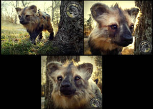 -SOLD- HAND MADE Poseable Hyena Pup!