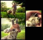 HAND MADE Poseable Baby Giraffe!