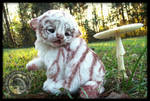 SOLD HAND MADE Baby White Tiger!