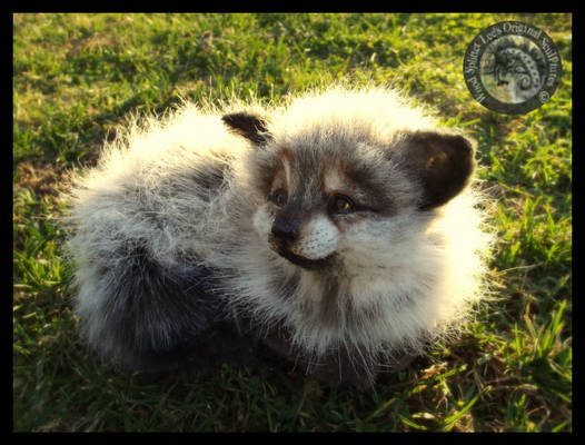 SOLD HAND MADE Poseable Baby Arctic Fox Kit!