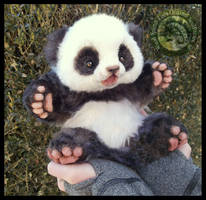 SOLD Handmade Poseable Baby Panda!