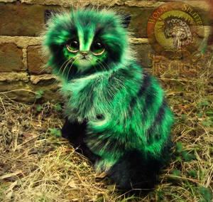 SOLD Pickles!  Handmade Poseable Fantasy Cat!