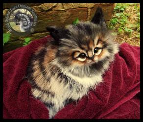 SOLD Handmade Kitten by Wood-Splitter-Lee
