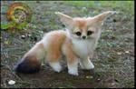 Handmade Fully Poseable Baby Fennec Fox!
