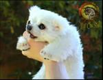 Handmade Poseable Baby Polar Bear