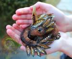 Sold, Elemental Baby Dragon!