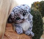 Sold, Baby Snow Leopard!