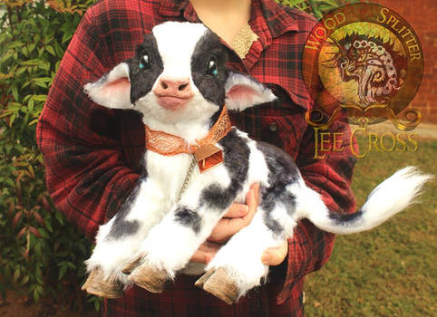 Sold, Poseable Baby Cow!