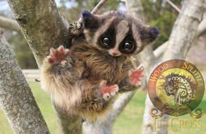 Sold, Poseable Baby Loris! by Wood-Splitter-Lee