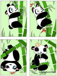 Panda go Boom