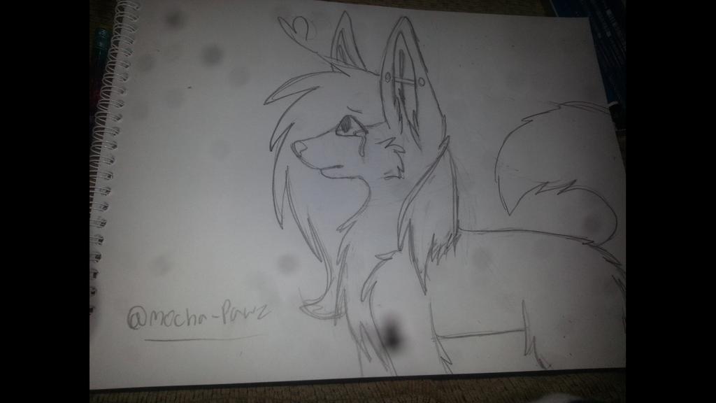 My Sad Wolf Drawing By Locketwolf ...