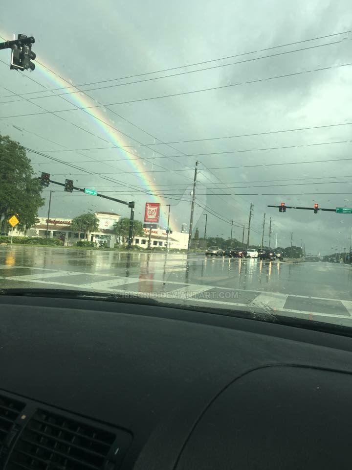 Rainbow by Ibisgrid