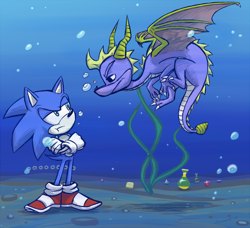 A Hedgehog And A Dragon Underwater Anook