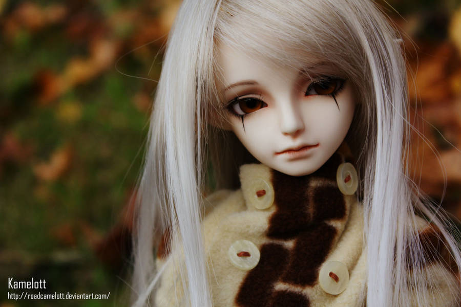 .::Autumn::. by RoadCamelott