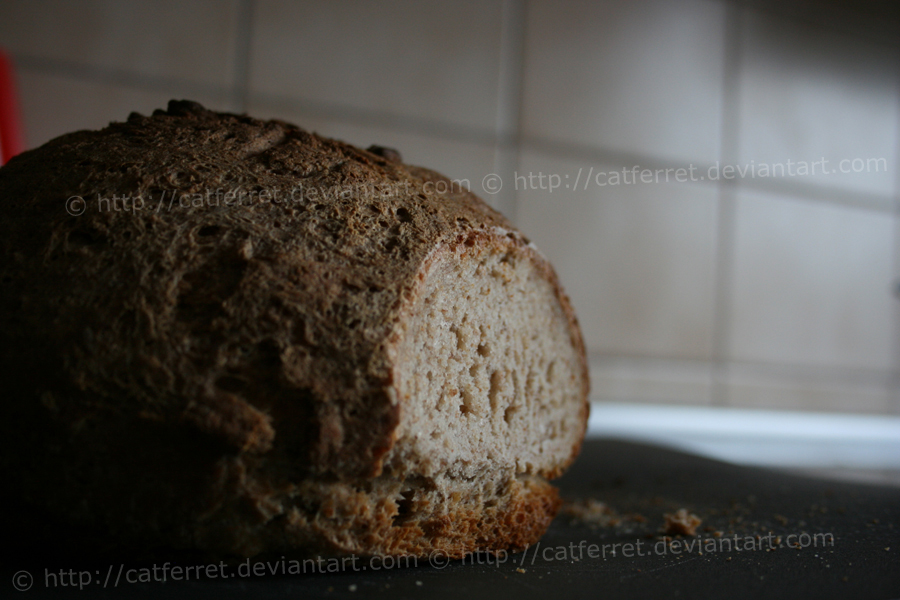 Brot II by catferret