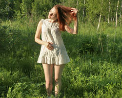 Summer in Ingermanland 9 by leadbirdie
