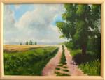 The road through the fields by mwolski