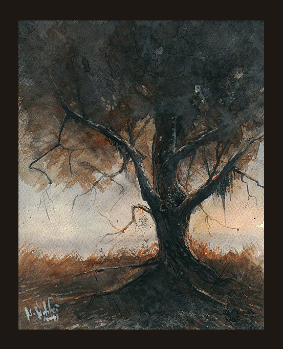 Old Oak II by mwolski