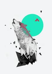 Wolf by mwolski