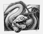 E is for Eel