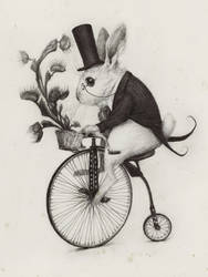 Delivery Rabbit by AudreyBenjaminsen