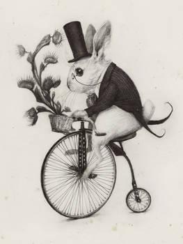 Delivery Rabbit